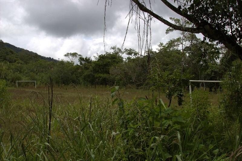 Mitten im Wald ein Fußballplatz.